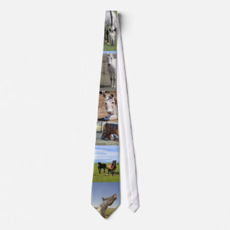Equine Excellence Tie