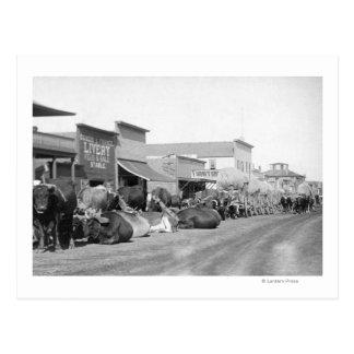 Équipes de boeuf le long de rue principale de cartes postales