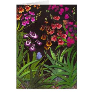 Equitant Oncidium Tolumnia Orchids Card