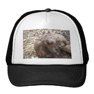 Éraflure de wombat casquette de camionneur