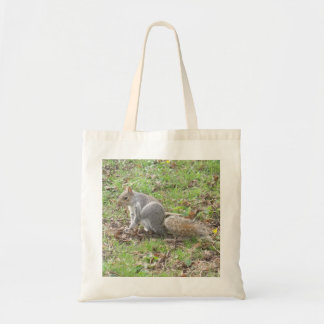 Éraflure mignonne d'écureuil sac en toile budget