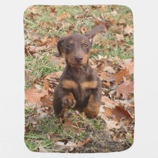 Eridox chocolate dachshund puppy baby blanket