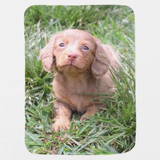Eridox Liberty isabella dachshund puppy Swaddle Blanket