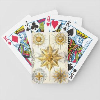 Ernst Haeckel  Acanthometra Bicycle Playing Cards