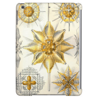 Ernst Haeckel  Acanthometra iPad Air Case