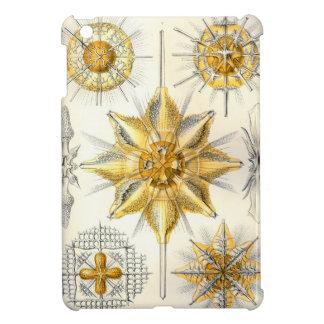 Ernst Haeckel  Acanthometra iPad Mini Cover