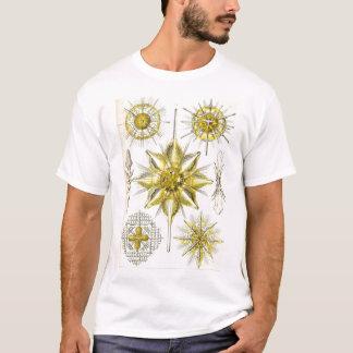 Ernst Haeckel - Acanthometra Tshirt