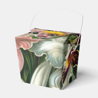 Ernst Haeckel Art Print:Orchidae Oncidiums, tulips Favor Box