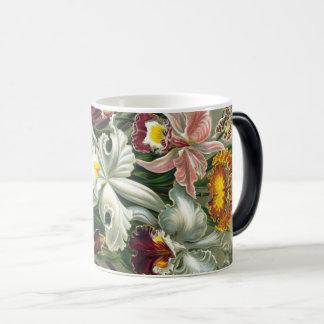 Ernst Haeckel Art Print:Orchidae Oncidiums, tulips Magic Mug