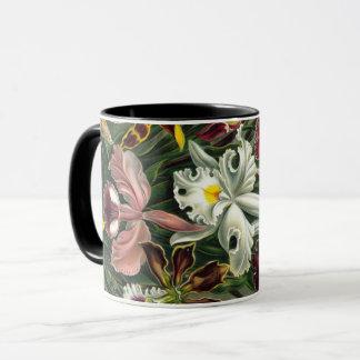 Ernst Haeckel Art Print:Orchidae Oncidiums, tulips Mug