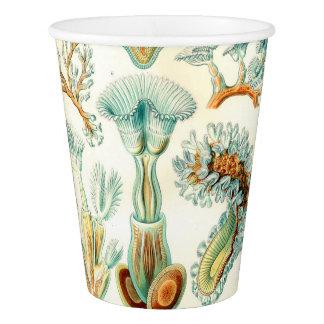 Ernst Haeckel Bryozoa invertebrates Paper Cup