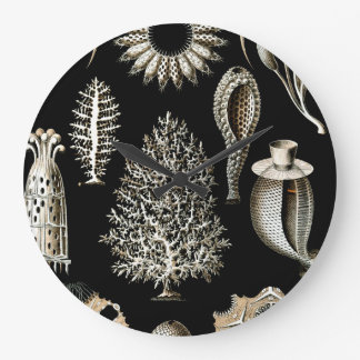 Ernst Haeckel Calcispongiae Large Clock