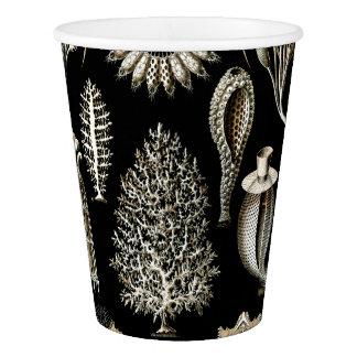 Ernst Haeckel Calcispongiae Paper Cup