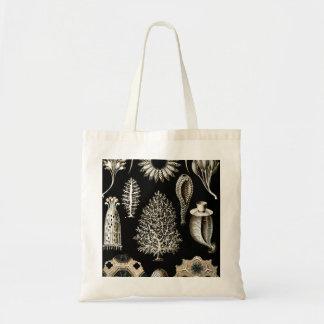 Ernst Haeckel Calcispongiae Tote Bag