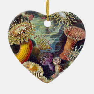 Ernst Haeckel Ceramic Ornament