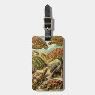 Ernst Haeckel Chelonia Luggage Tag