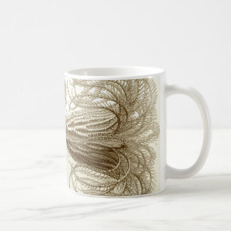 Ernst Haeckel Crinoidea feather stars Coffee Mug