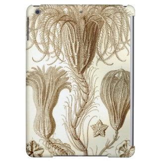 Ernst Haeckel Crinoidea feather stars iPad Air Cases