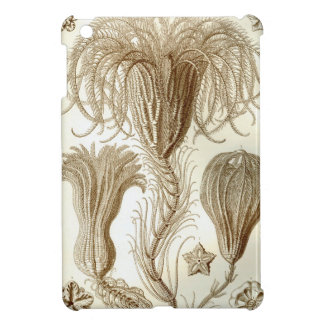 Ernst Haeckel Crinoidea feather stars iPad Mini Cover
