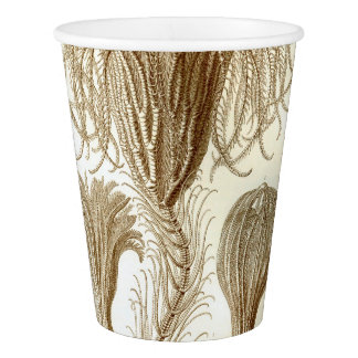 Ernst Haeckel Crinoidea feather stars Paper Cup