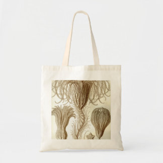 Ernst Haeckel Crinoidea feather stars Tote Bag