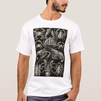 Ernst Haeckel - Decapoda T-Shirt