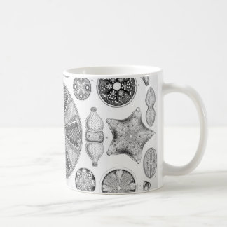 Ernst Haeckel Diatomea Coffee Mug