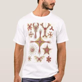 Ernst Haeckel - Discoidea Tshirt
