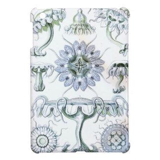 Ernst Haeckel Discomedusae Jellyfish Case For The iPad Mini