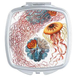 Ernst Haeckel Discomedusae Jellyfish Compact Mirror