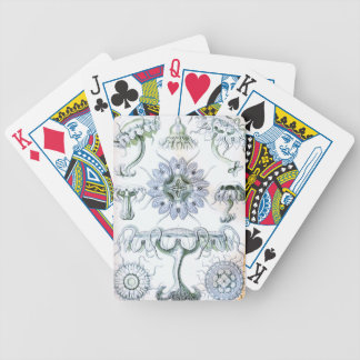 Ernst Haeckel Discomedusae Jellyfish Poker Deck