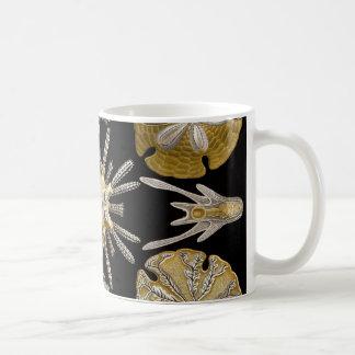 Ernst Haeckel Echinidea Sea Urchins Coffee Mug
