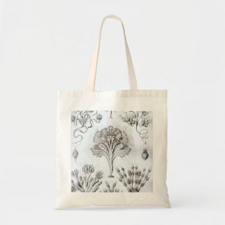 Ernst Haeckel Flagellata Tote Bag