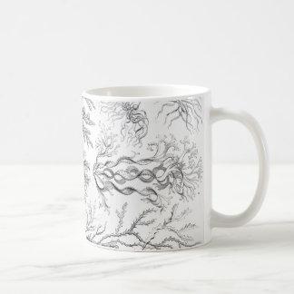 Ernst Haeckel Fucoideae weeds! Coffee Mug