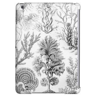 Ernst Haeckel Fucoideae weeds! iPad Air Cases