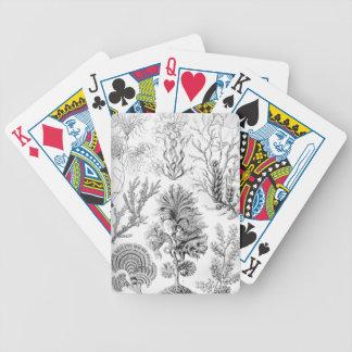 Ernst Haeckel Fucoideae weeds! Poker Deck
