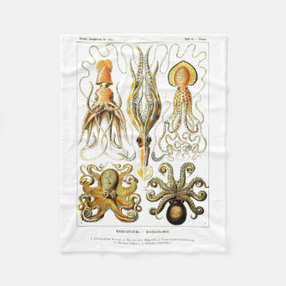 Ernst Haeckel Gamochonia Print Octopus & Squid Art Fleece Blanket