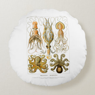 Ernst Haeckel Gamochonia Print Octopus & Squid Art Round Pillow