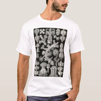 Ernst Haeckel - Gorgonida Tshirt