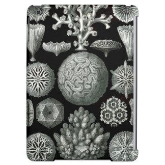 Ernst Haeckel Hexacorallia Coral Cover For iPad Air