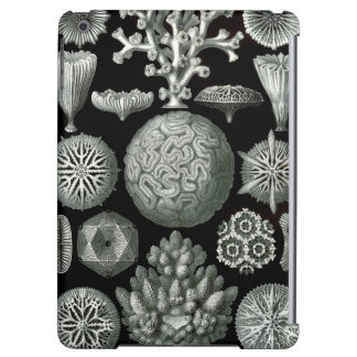 Ernst Haeckel Hexacorallia Coral iPad Air Cover