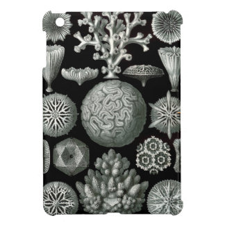 Ernst Haeckel Hexacorallia Coral iPad Mini Cases