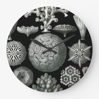 Ernst Haeckel Hexacorallia Coral Large Clock