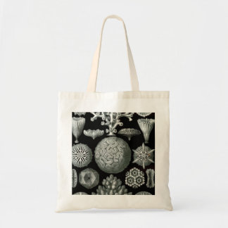 Ernst Haeckel Hexacorallia Coral Tote Bag