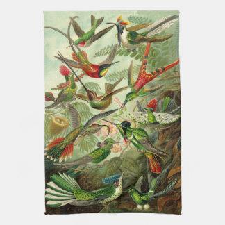 Ernst Haeckel Hummingbird Illustration Kitchen Towel