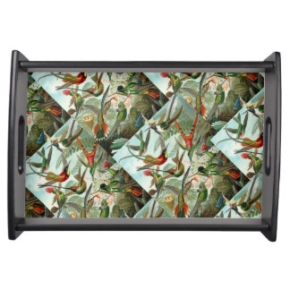 Ernst Haeckel Hummingbirds - Art Forms of Nature Serving Tray