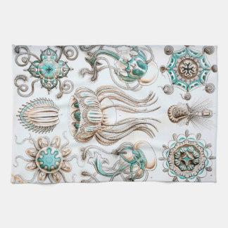Ernst Haeckel Narcomedusae jellyfish! Kitchen Towel