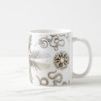 Ernst Haeckel Ophiodea brittle Stars Coffee Mug