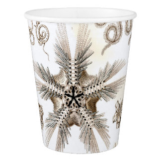 Ernst Haeckel Ophiodea brittle Stars Paper Cup