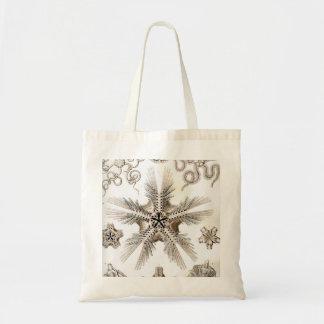 Ernst Haeckel Ophiodea brittle Stars Tote Bag